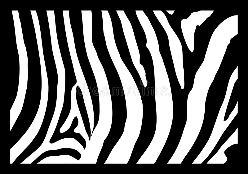 Zebra skin stock illustration