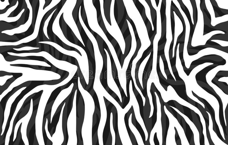 Zebra skin, stripes pattern. Animal print, black and white detailed and realistic texture. royalty free illustration