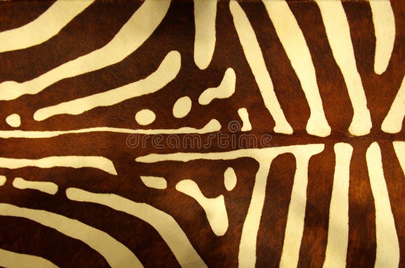 Zebra skin texture stock photos