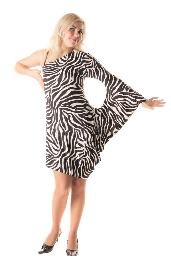 Download Zebra style stock photo. Image of woman, style, caucasian - 8394180