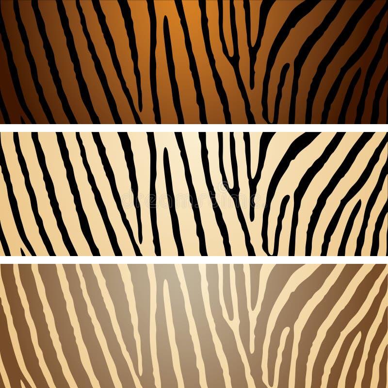 Download Zebra variation stock vector. Image of variation, animal - 9481762
