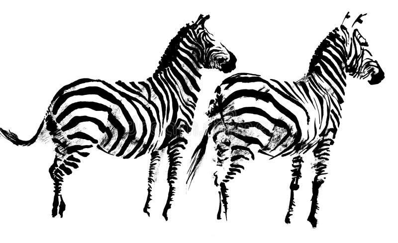 Zebra1 illustrazione vettoriale