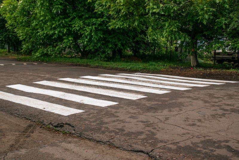 Zebramarkering i staden royaltyfri bild