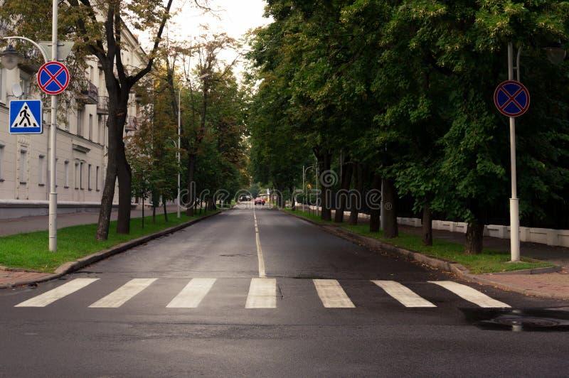 Zebrapad en stadsstraat met alleen auto stock foto's