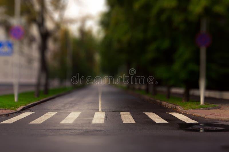 Zebrapad op de lege close-up van de stadsstraat Horizontale mening Sh schuine stand stock foto's