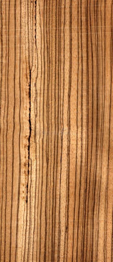 Zebrawood africano de madeira imagem de stock