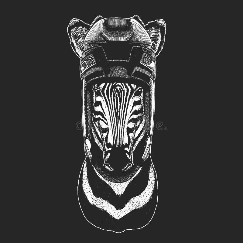 Zebry Koński dzikie zwierzę jest ubranym hokejowego hełm Druk dla koszulka projekta royalty ilustracja