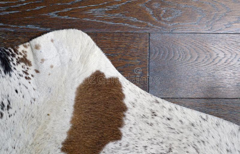 Zebu silver cowhide leather and hair details with brown engineer. Ed hardwood floor. Calgary, Alberta, Canada stock photos