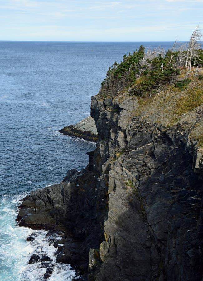 Zeegezicht dichtbij Torbay-Bocht, NL Canada royalty-vrije stock afbeeldingen