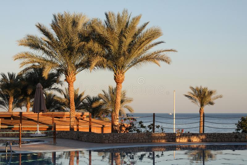 Zeegezicht, Egypte, Sharm el-Sheikh royalty-vrije stock foto's