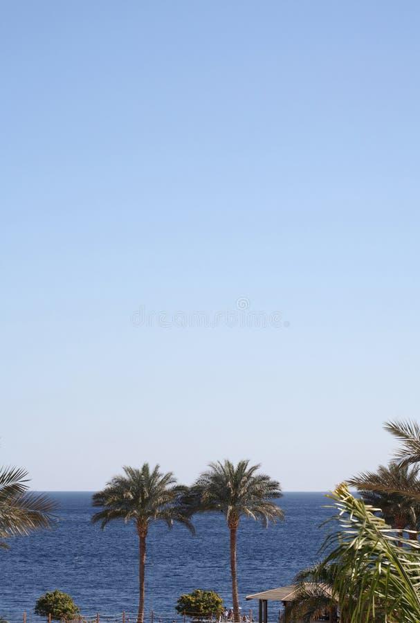 Zeegezicht, Egypte, Sharm el-Sheikh royalty-vrije stock afbeelding