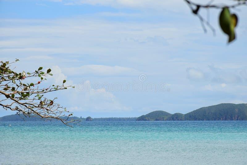 Zeegezicht met berg en boom bij oceaan Koh Chang-eiland, Thailand stock foto's
