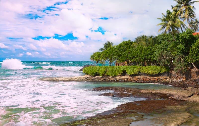 Zeegezicht met schilderachtig strand en tropische vegetatie royalty-vrije stock fotografie