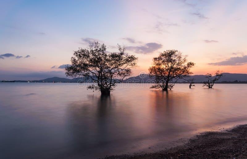 Zeegezicht tijdens Zonsopgang Mooi natuurlijk zeegezicht stock foto