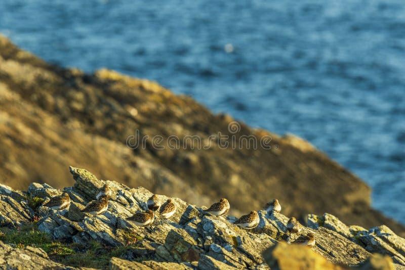 Zeegezichten over het Eiland van Lewis-kusten, Schotland stock fotografie