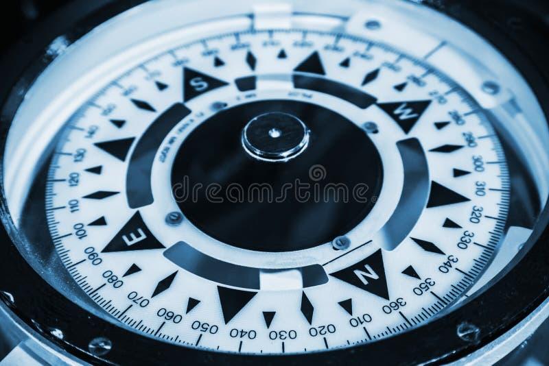Zeekompas Blauwe gestemde macrofoto stock foto's