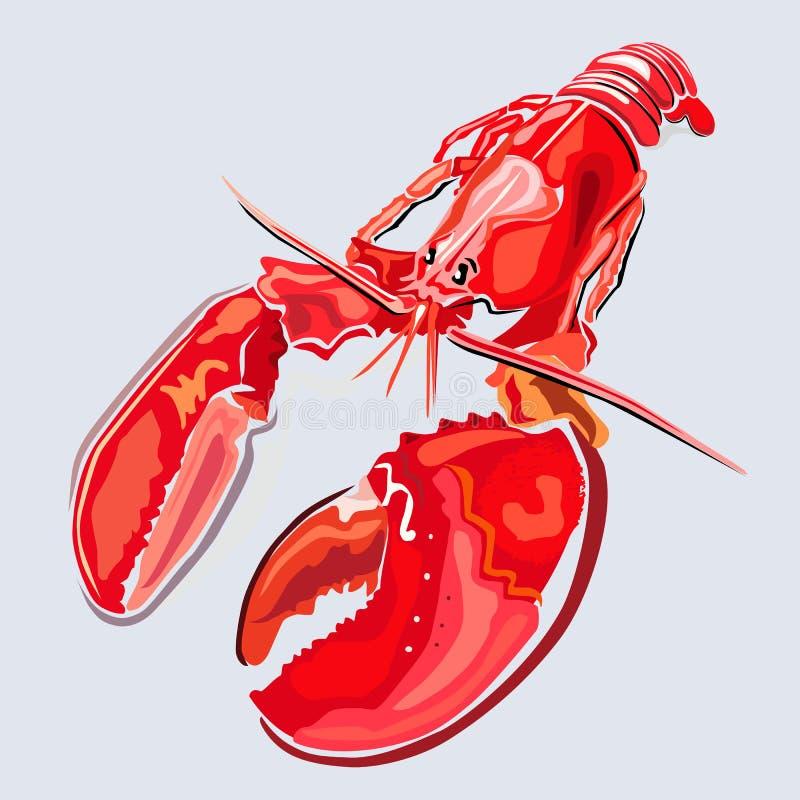 Zeekreeft vector illustratie