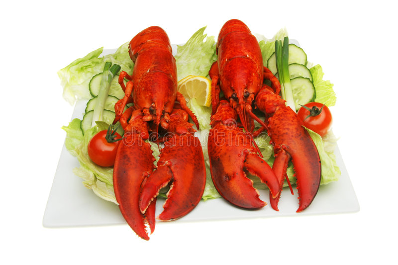 Zeekreeften en salade royalty-vrije stock afbeeldingen