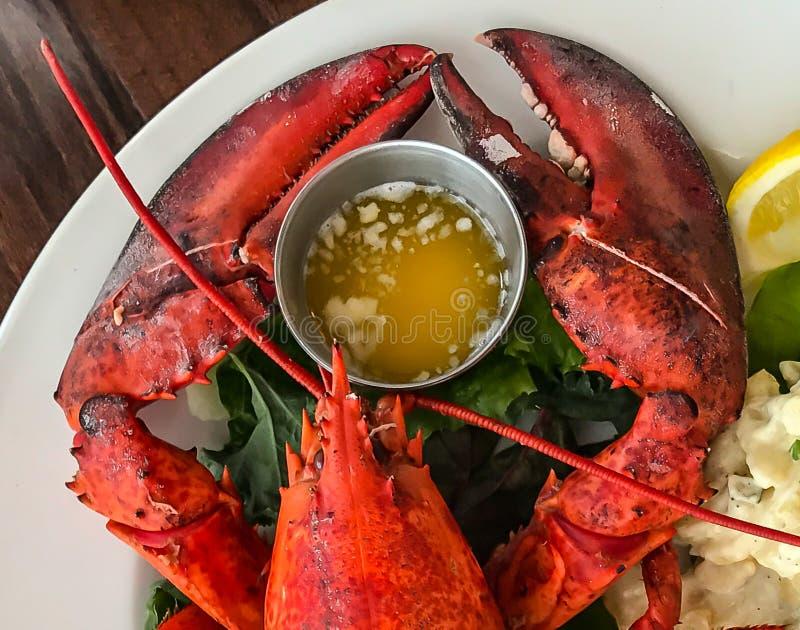 Zeekreeftklauwen voor Diner royalty-vrije stock fotografie
