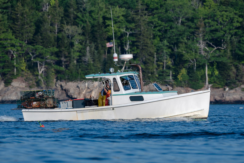 Zeekreeftmensen hard bij het werk op een mooie ochtend in de vroege herfst in Zuiden Bristol, Maine, Verenigde Staten stock afbeelding