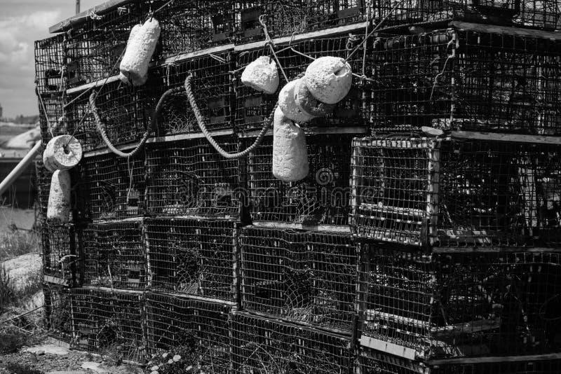 Zeekreeftvallen stock afbeeldingen