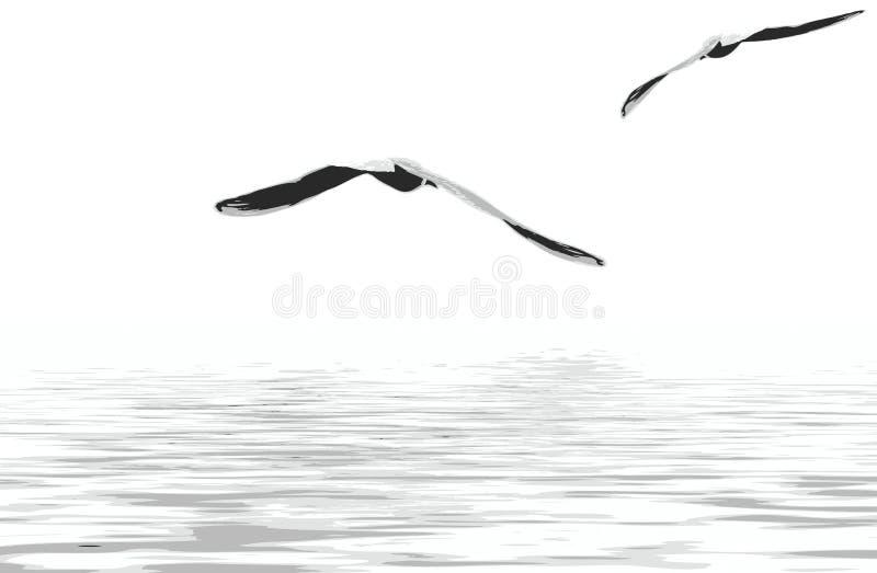 zeemeeuwen vector illustratie