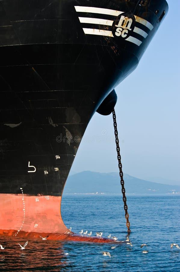 Zeemeeuwen die op Bulba-het bedrijf van het doctorandus in de exacte wetenschappenschip zitten De Baai van Nakhodka Van het ooste stock foto's