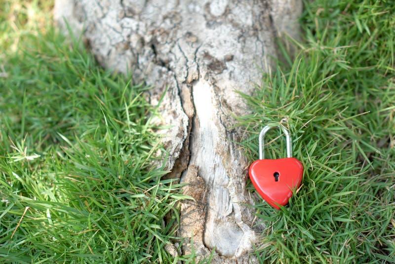 Zeer belangrijke rode harten op het gazon, het concept liefde en Valentine& x27; s stock foto