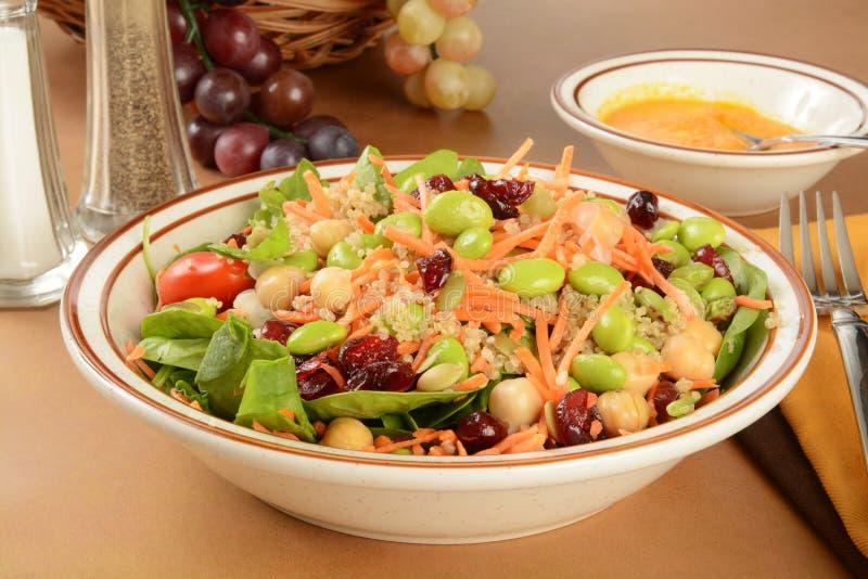 Zeer gezonde salade stock fotografie
