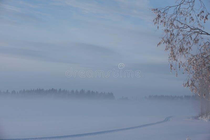 Zeer koude de winterdag in platteland stock afbeeldingen