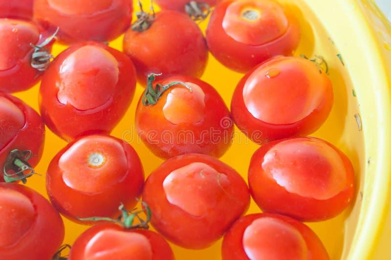 Zeer verse die tomaten in water voordien worden voorgesteld stock fotografie