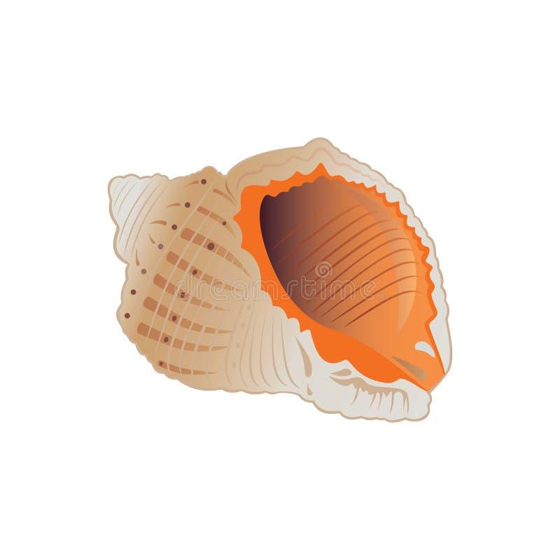 Zeeschelp. vector illustratie