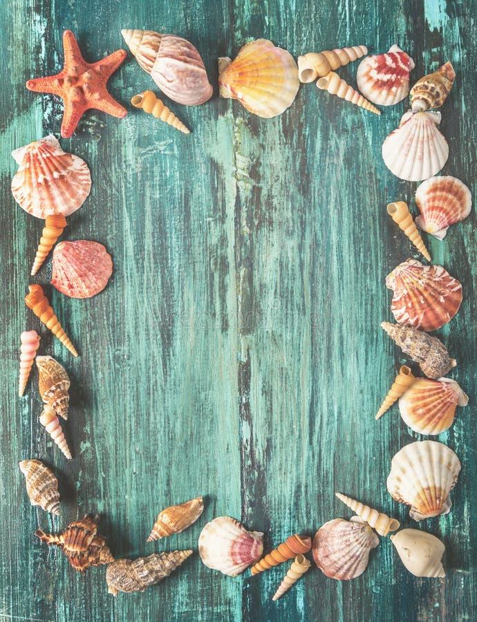 Zeeschelp en zeesterkader op houten achtergrond stock foto