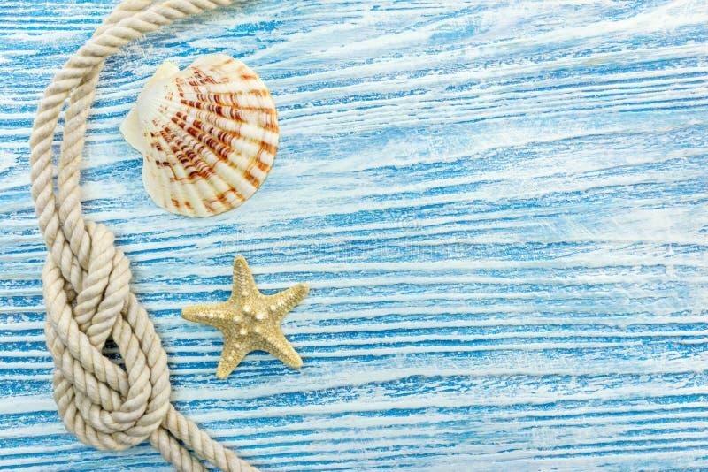 Zeeschelp, zeester, mariene kabel op blauwe houten gekraste raad royalty-vrije stock foto