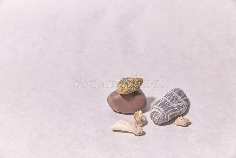 Zeeschelpen en stenen op de oppervlakte kleine voorwerpen royalty-vrije stock afbeeldingen