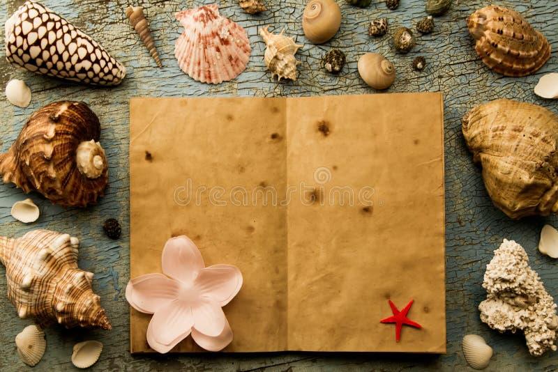 Zeeschelpen en zeester op de oude gebarsten blauwe achtergrond open een oud boek stock foto