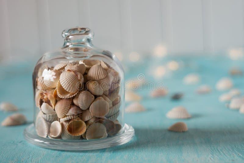 Zeeschelpen in glas minikoepel Lichten op de achtergrond stock afbeeldingen