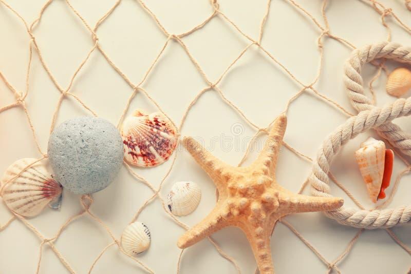 Zeeschelpen met zeester en netto op witte achtergrond stock foto