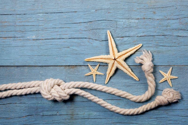 Zeester en mariene kabel stock afbeelding