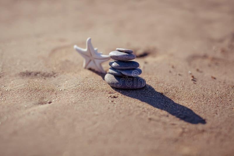 Zeester en stapel kiezelstenen bij het strand stock foto