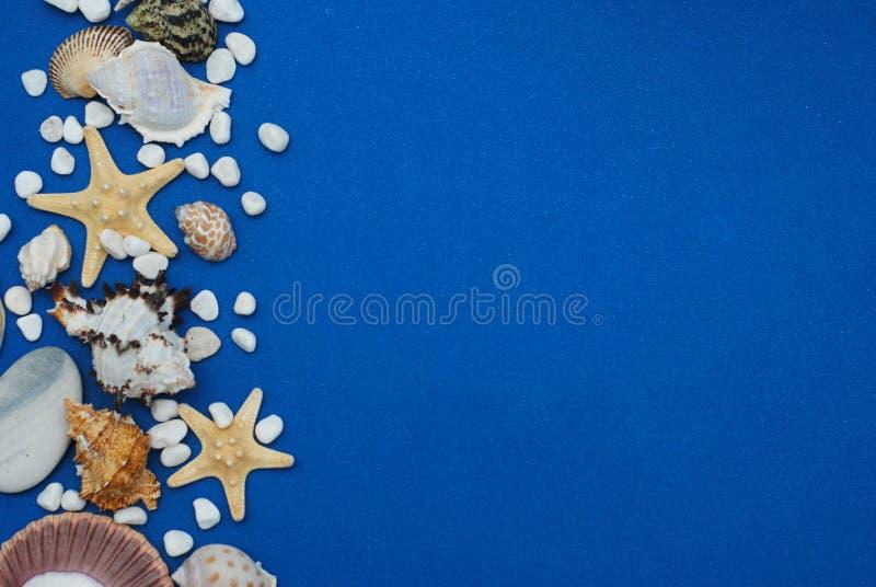 Zeester met Shells en stenen tegen een Blauwe Achtergrond met Exemplaarruimte De zomer Holliday Zeevaart, Marrine-concept royalty-vrije stock foto