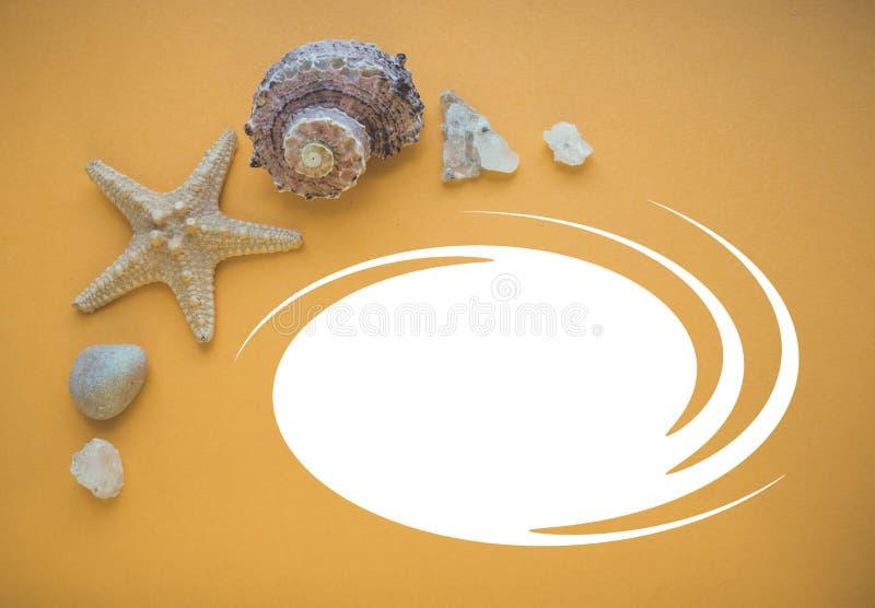 Zeester, shell en overzeese stenen op een oranje achtergrond stock afbeeldingen