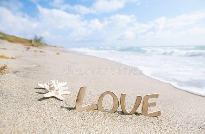 Zeester twee met liefdebericht op het strand van Florida royalty-vrije stock afbeeldingen