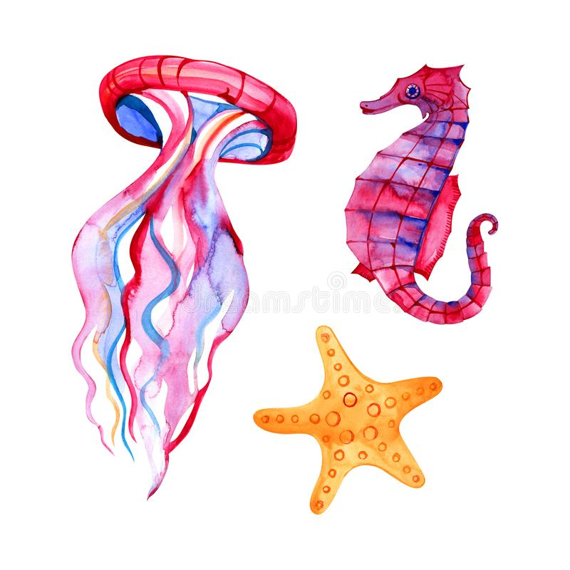 Zeevaartelementen, het overzeese leven, vissen, seahorse, jongen, de illustratie van de zeesterwaterverf, die op witte achtergron stock illustratie
