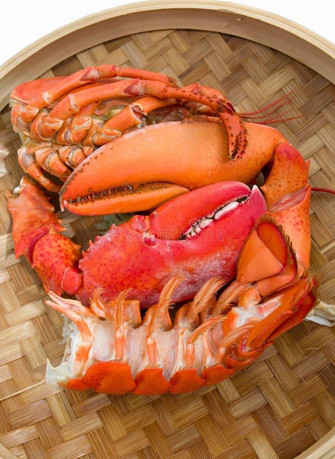 zeevruchten   stock foto's