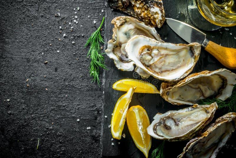 Zeevruchten Heerlijke ruwe oesters met dille en citroen stock afbeeldingen