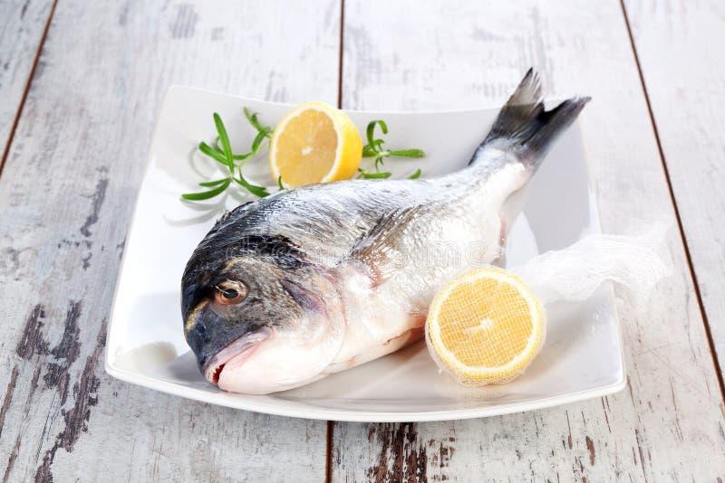Zeevruchten. Verse vissen op witte plaat. royalty-vrije stock foto's