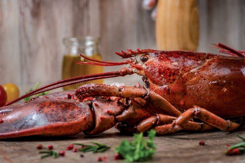 Zeevruchtenzeekreeften Verse mooie grote overzeese zeekreeften heerlijk royalty-vrije stock afbeelding