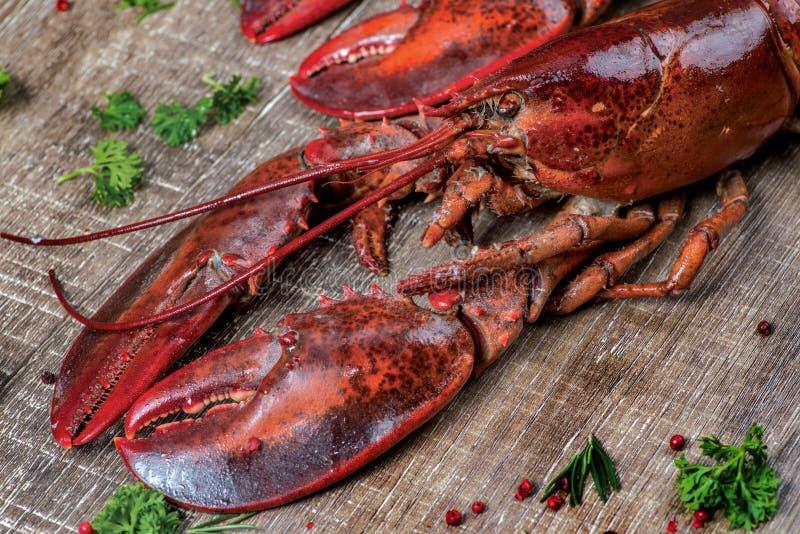 Zeevruchtenzeekreeften Verse mooie grote overzeese zeekreeften heerlijk stock foto