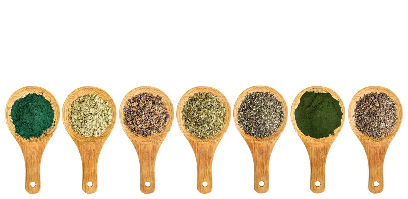 Zeewier en van de algenvoeding supplementen stock foto